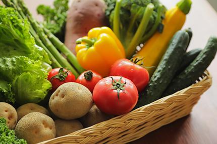 地元の食材を使用した季節のお料理